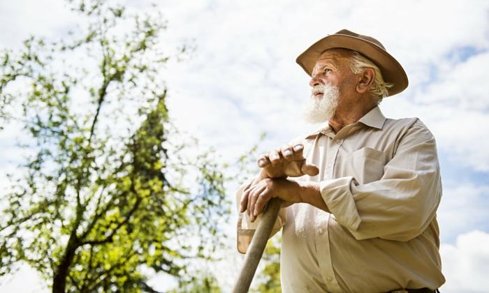 1- Como utilizar o tempo de trabalhador rural para sua aposentadoria no INSS