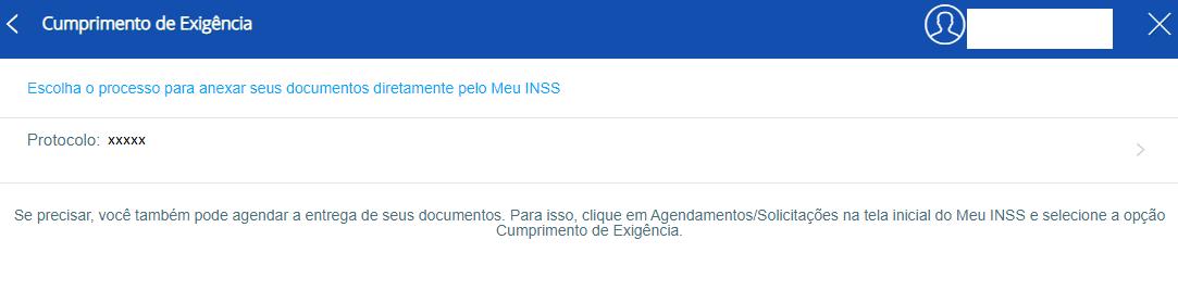 Exigências no Site do Meu INSS.