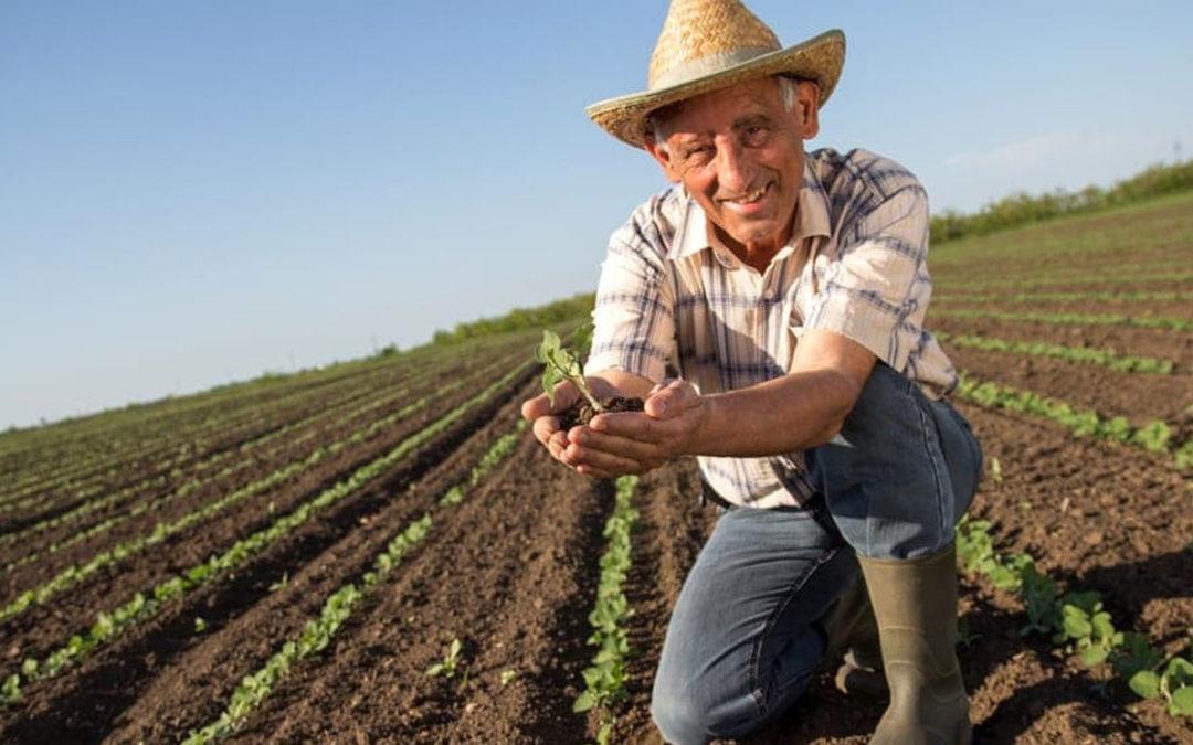 Aposentadoria Rural 2020 com a Reforma da Previdência