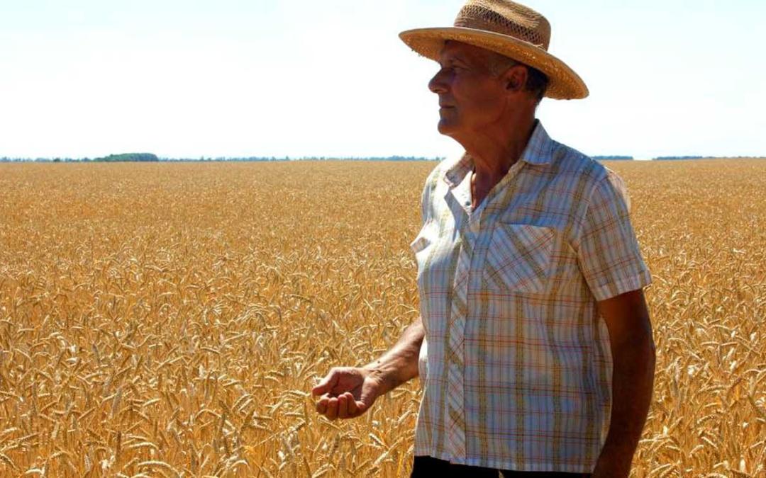 aposentadoria-rural-direito