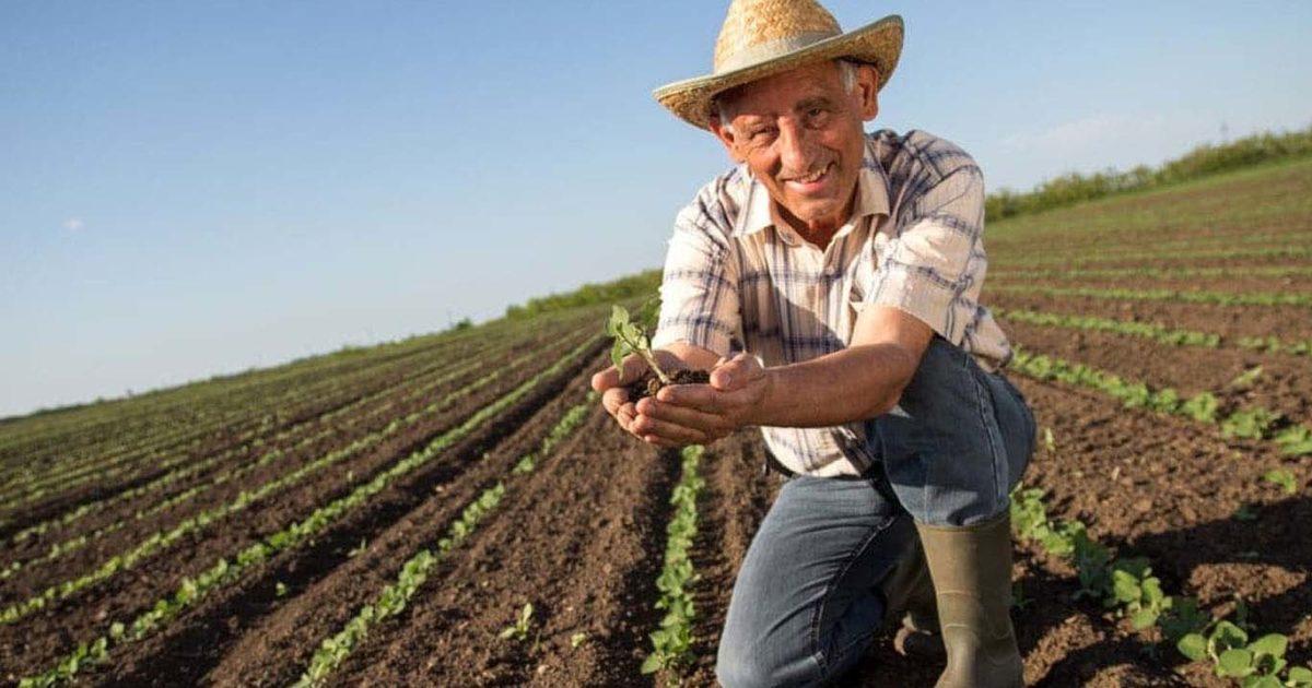 aposentadoria-rural-reforma-da-previdencia