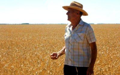 Saiba tudo sobre a aposentadoria rural