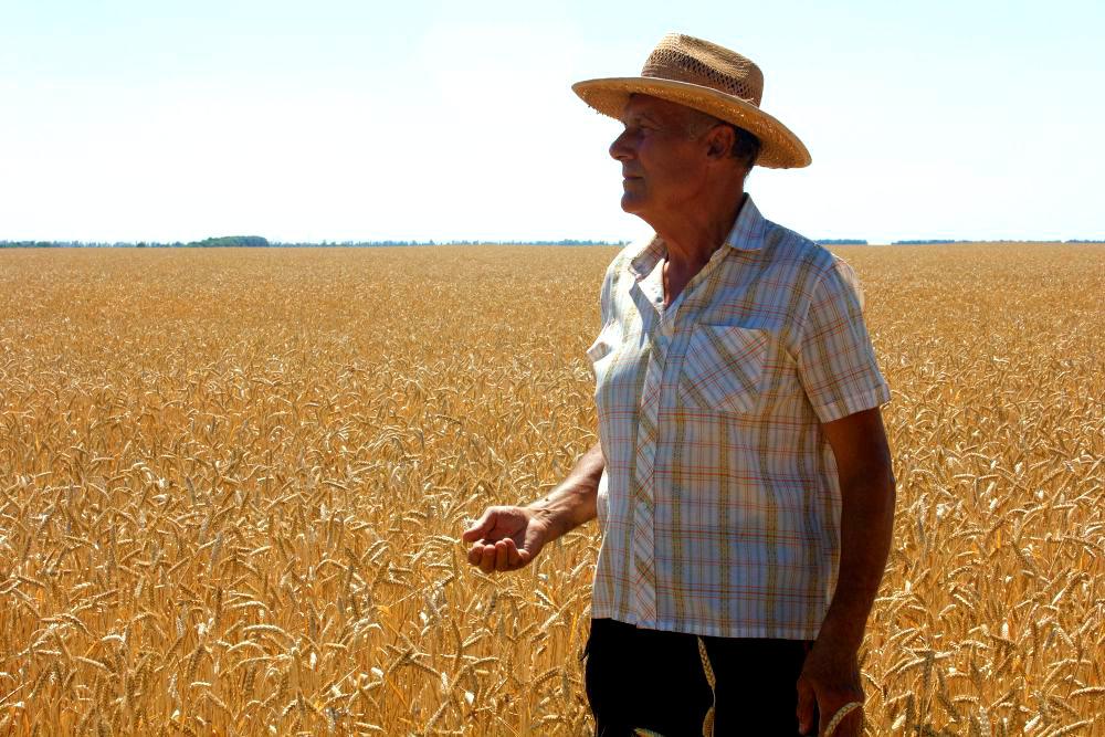 Aposentadoria rural: como comprovar no INSS e evitar erros