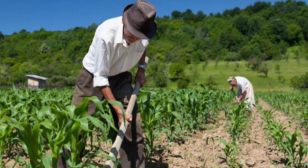 Como funciona a pensão por morte para o Trabalhador rural?